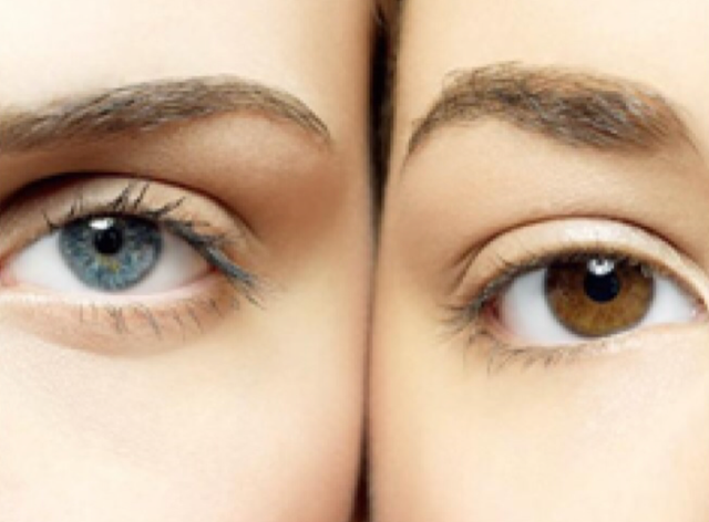 double eyelid ตา2ชั้น